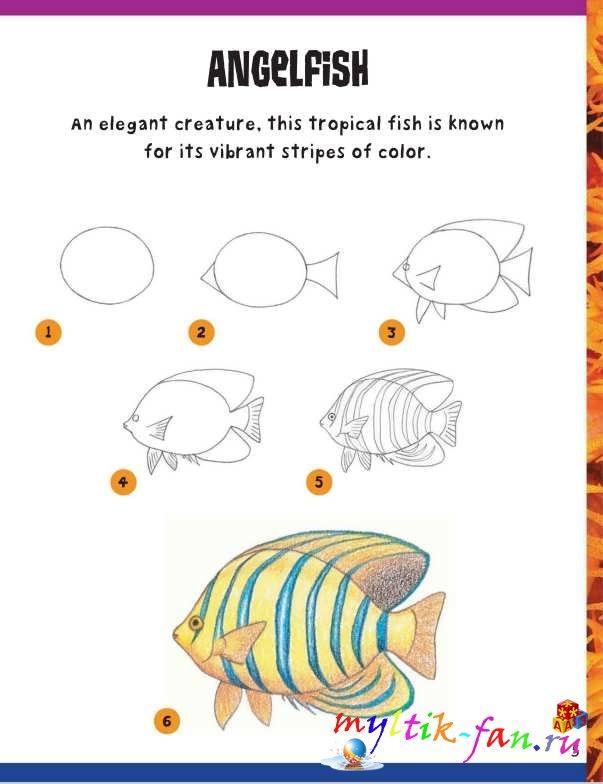 Учимся рисовать азы
